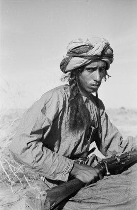 Seated portrait of Salim bin ...