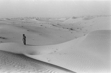 View of Salim bin Kabina ...