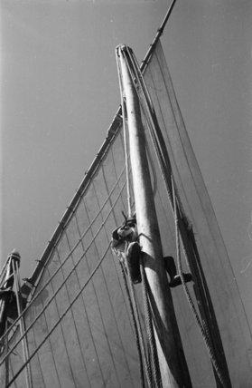 Portrait of a sailor climbing ...