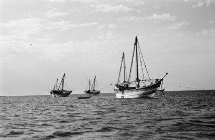 View of dhows moored at ...