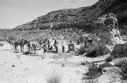 Wilfred Thesiger's Bedouin travelling party ...