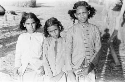 Portrait of three boys in ...