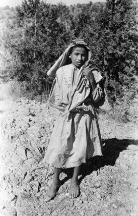 Portrait of a boy standing ...