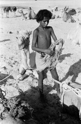 Portrait of a Bedouin boy ...