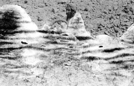 Portrait of Awad bin Khazai ...