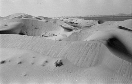 View of dunes along the ...