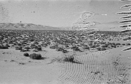 View of a desert plain ...