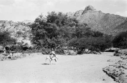 A man on a donkey ...