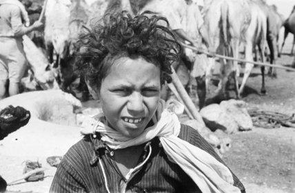 Close-up portrait of a boy ...