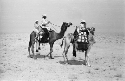 Portrait of a Bedouin family ...
