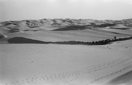 View of a sand dunes ...