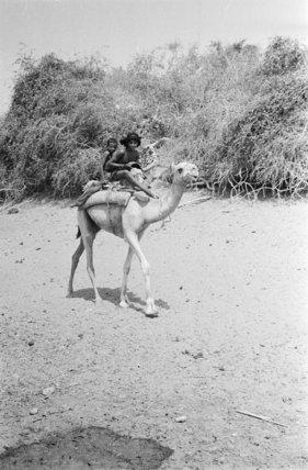 Portrait of two Bedouin boys ...
