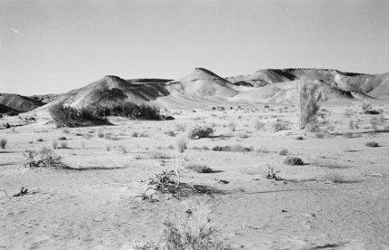 Landscape in the Wadi Rahnah ...