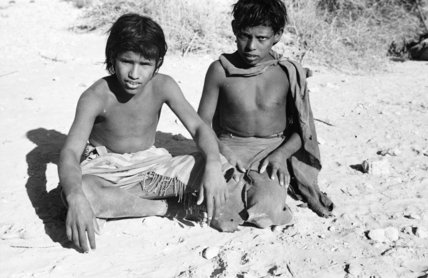 Portrait of two teenage boys ...