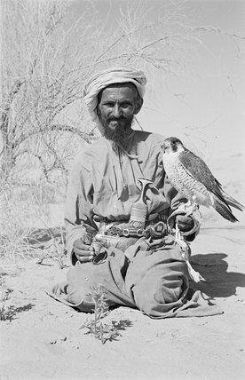 Profile portrait of a tribesman ...