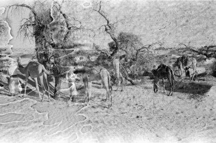 View of members of Wilfred ...