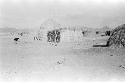 A hut in Majamah village ...
