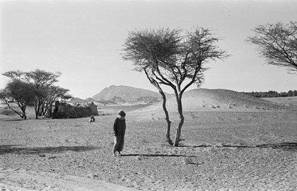 View of a man walking ...