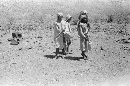 Portrait of three Arab men ...