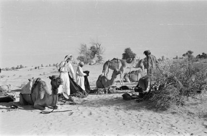 Wilfred Thesiger's party making camp ...