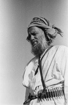 Standing half-length portrait of Sahail ...