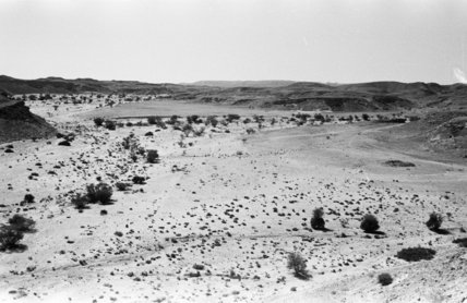 Landscape of a gravelly dry ...