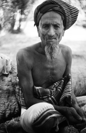 Seated portrait of an elderly ...