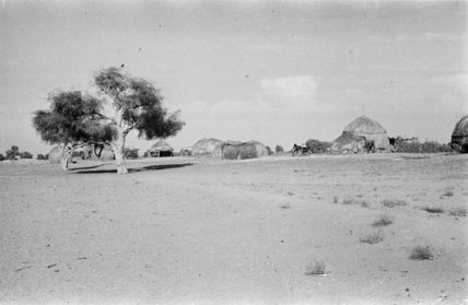 View of round huts with ...