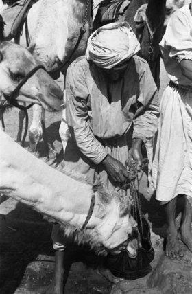 Standing portrait of a Bedouin ...