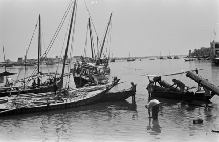 View of dhows (sailboats) and ...