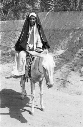 Portrait of an Arab boy ...