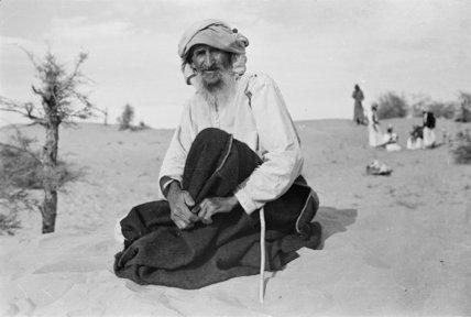 Seated portrait of an elder ...