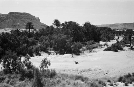 View of landscape in the ...