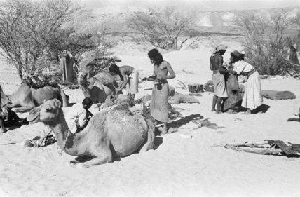View of Bedouin men camping ...