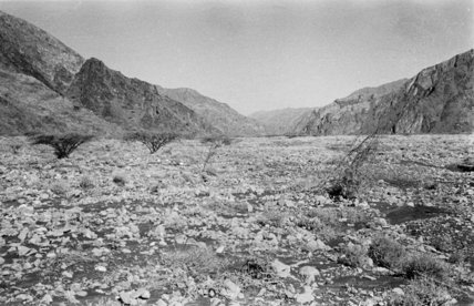 View of the Wadi Tayyah ...