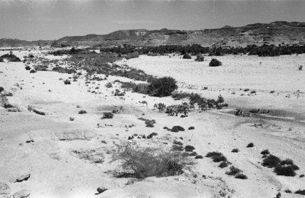 Landscape at Habarut wells. View ...
