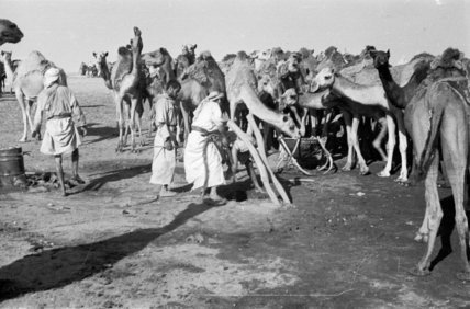 View of tribesmen of the ...
