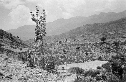 Mountain landscape near Harub village. ...
