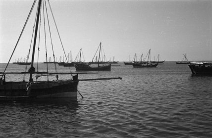 Side view of dhows (sailboats) ...