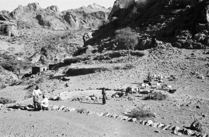 View of villagers with goats ...