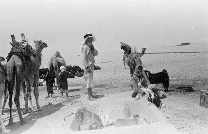 View of Rashid Bedouin at ...
