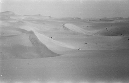 View of high rippled dunes ...