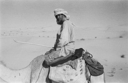 Seated portrait of Sahail bin ...