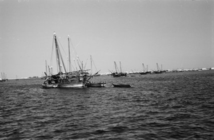 Distant view of dhows moored ...