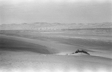 View of a sabkha (salt ...