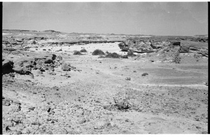 View looking across the Wadi ...