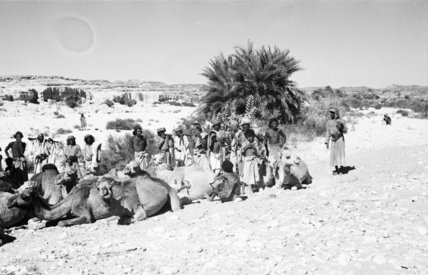 View of a group of ...