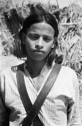Portrait of a boy in ...