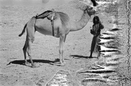 Salim bin Kabina, a young ...