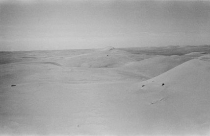 View of dunes in the ...